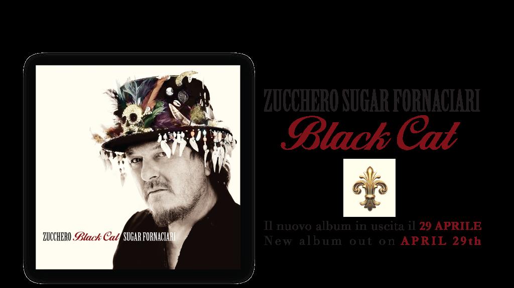 zucchero sugar fornaciari black cat new album out on april 29. Black Bedroom Furniture Sets. Home Design Ideas