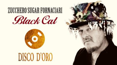 Black Cat Gold Disc