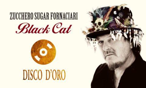 Black Cat Disco D'Oro!
